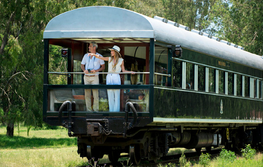 safaris-en-train